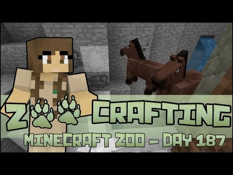 Wild Horse Rescue! 🐘 Zoo Crafting: Season 2 - Episode #187