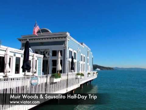 Muir Woods & Sausalito Half Day Trip