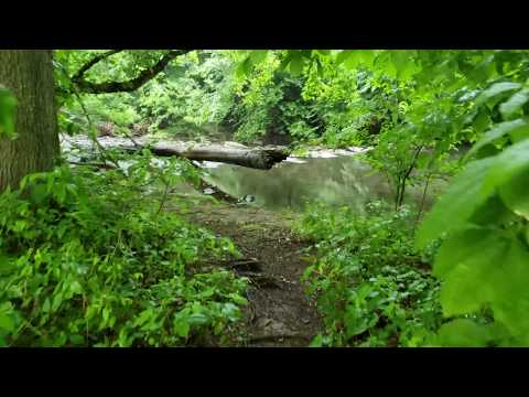 Samsung Galaxy S9 Plus Camera (4K Video): Gorgeous Nature Footage