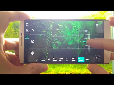 What Camera & Apps I Use for Youtube Video Recording (Aquariums)