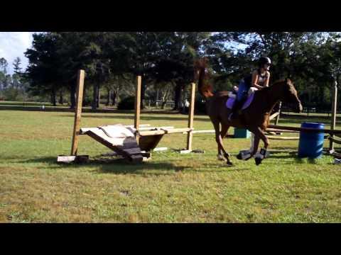 Taylor jumping scary jump