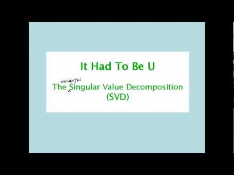 The SIngular Value Decomposition (SVD) song: It Had To Be U