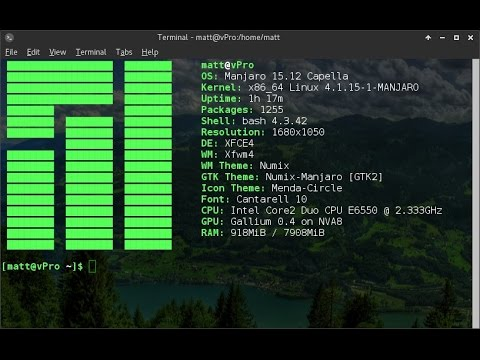 Customize Your Terminal with Screenfetch.