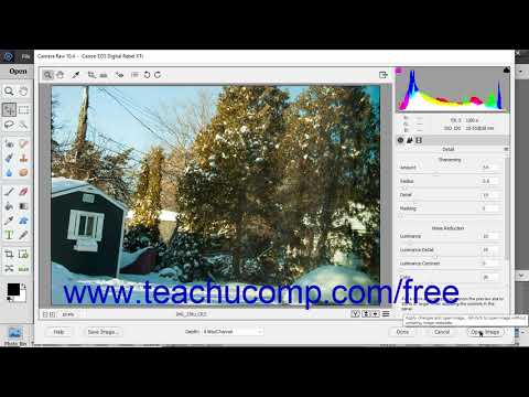 Photoshop Elements 2019 Tutorial Opening a Copy of the Camera Raw Filein the Editor Adobe Training