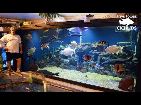 Big Tanks, Big Fish, and Big Rich - Touring Ohio Fish Rescue