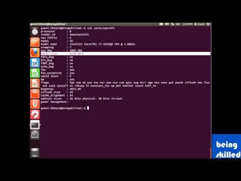 How to Check details of processor / CPU in linux based operating systems ?