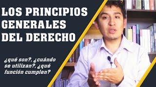 LOS PRINCIPIOS GENERALES DEL DERECHO | Introducción al Derecho (# 7)