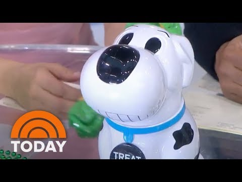 Hoda Kotb, Jenna Bush Hager And Lester Holt Try A Barking Cookie Jar | TODAY