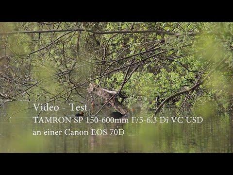 Blässhühner mit Küken Tamron 150-600 Testvideo