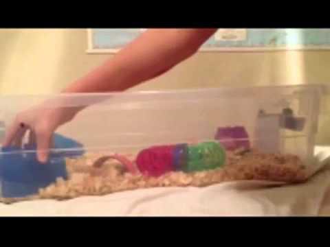 DIY bin cage (for hamsters)