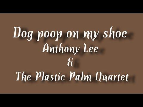 Dog poop on my shoe