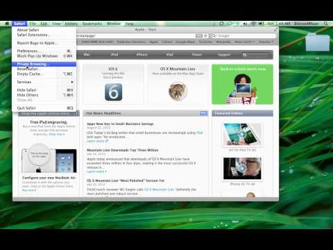 How To delete Your Internet History in Safari and Reset Safari