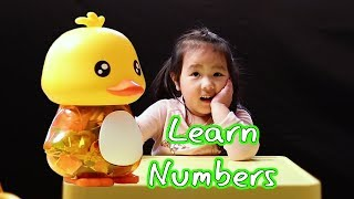 Learn Numbers For Kids Counting 1 to 20 With Ducky