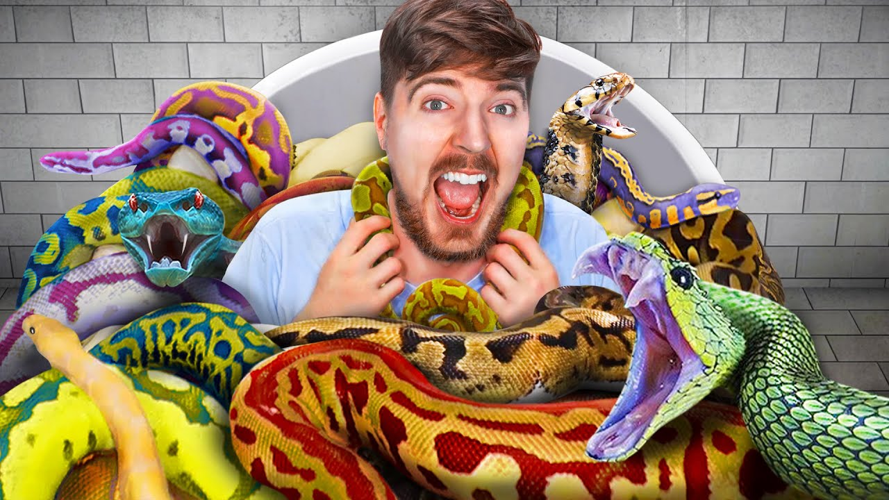 Would You Sit In Snakes For $10,000?
