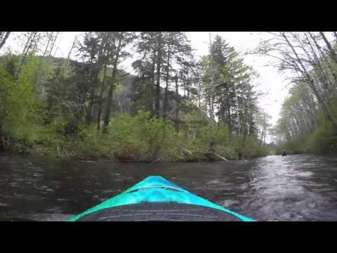 Kayak with Bob and Stephanie