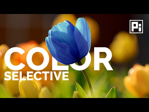 How to Replace Color in Photoshop CC 2017 | Adjust Color Selectively