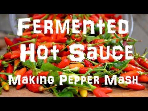 Xxx Mp4 Homemade Tabasco Hot Sauce Making Pepper Mash Part 1 Of 2 3gp Sex