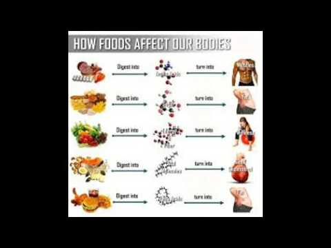 How to keep your Body Fit ! Health Tips