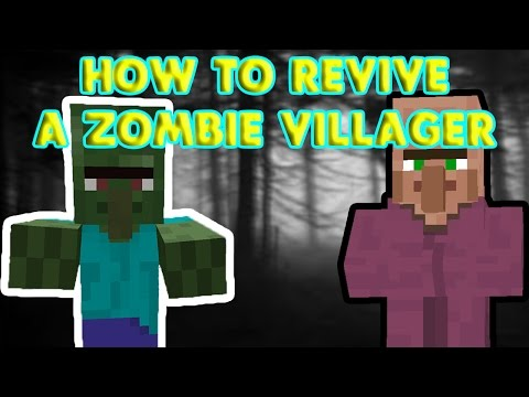 HOW TO REVIVE A ZOMBIE VILLAGER IN MINECRAFT!