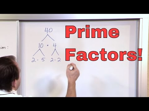 Prime Factorization - 5th Grade Math - Finding Factors of a Number (Factoring) - Math Homework Help!