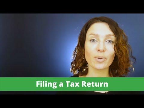 Irish PAYE Guide. Filing a Tax return.