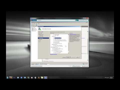 Windows Server 2008 R2 Application & IIS Role Installation