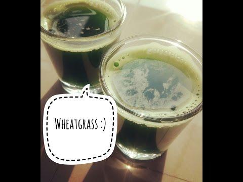 how to make wheatgrass shots in blender at home easy method|दोस्तों आप इस वीडियो को जरूर देखें है |