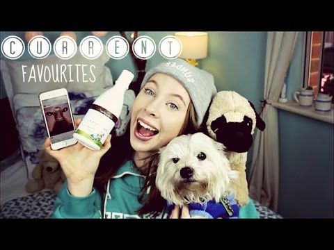 Current Favourites Winter 2016 | TheDogBlog