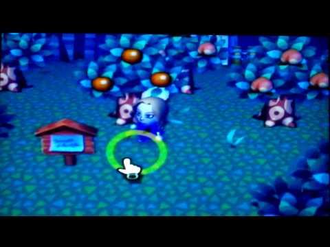 Animal Crossing Bug Catching 2
