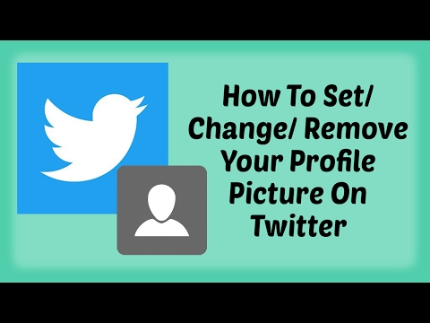 How To Set/ Change/ Remove Your Profile Picture On Twitter in Hindi | How To Tutorials For Twitter