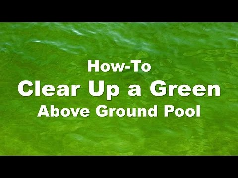 Clearing Up a Green Above Ground Pool (Step-by-Step)