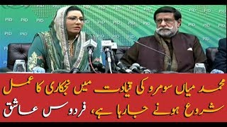Privatization is underway under the leadership of Mohammad Mian Soomro, Firdous Ashiq