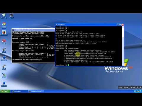 how to launch any graphical application on linux or X11 forwarding or Xming launch