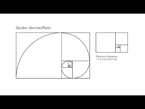 How To: Draw Golden Rectangle Fibonacci Sequence | Render the golden ratio/mean in Adobe Illustrator