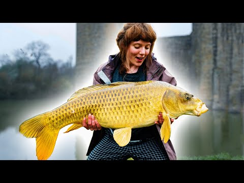 GIANT GOLDEN FISH caught with BREAD! Carp Fishing