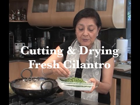 Cutting & Drying Fresh Cilantro (a.k.a. Coriander) | @CAIndianCuisine
