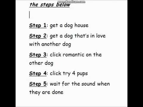 The sims 3 - How to make your dogs pregnant.