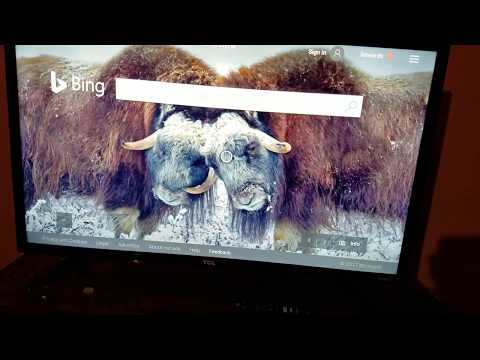 Philo on Fire TV via the silk browser