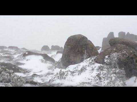 Mt. Wellington snow falling