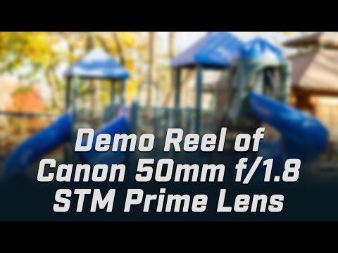 Test Footage / Canon EF 50mm f/1.8 STM Prime Lens