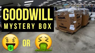 I Bought 3 Mystery Pallets From Goodwill | Was It Worth It?