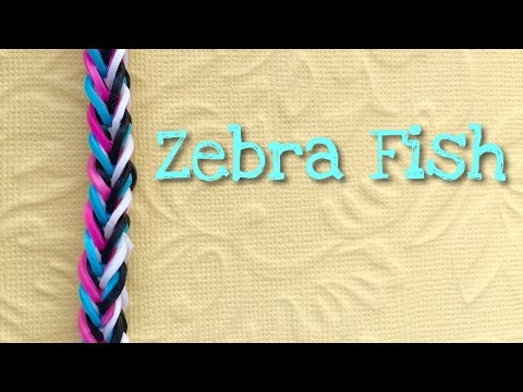 rainbow loom bands zebra fish tutorial