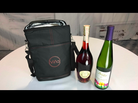 Vina 2-bottle Insulated Travel Wine Carrier Picnic Cooler Tote Bag review
