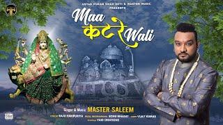 Maa Katre Wali    Master Saleem    Devotional Song 2020    Master Music