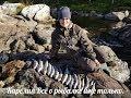 Download Два дня отличной рыбалки в красивейших местах Карелии MP3,3GP,MP4