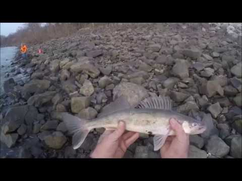 Sauger Fishing in Heavy Current and Rocks