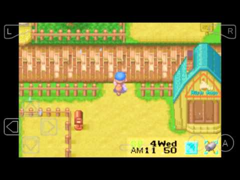 Harvest Moon :Friend Of Mineral Town #2 Chocolate!