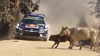 20 FUNNIEST RALLY MOMENTS