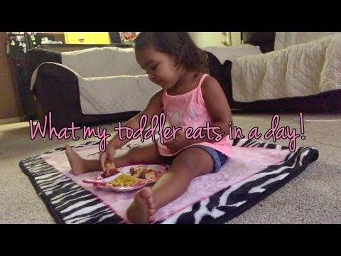 What my toddler eats for Breakfast, Lunch, & Dinner!