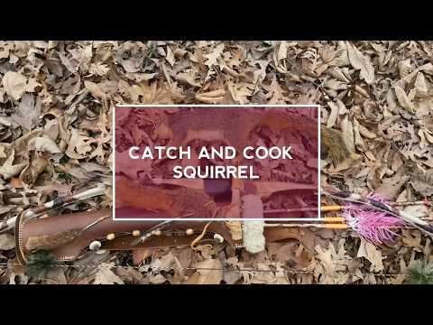 Catch and Cook Squirrel /Mmmmmm